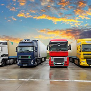 Truck and Fleet Management